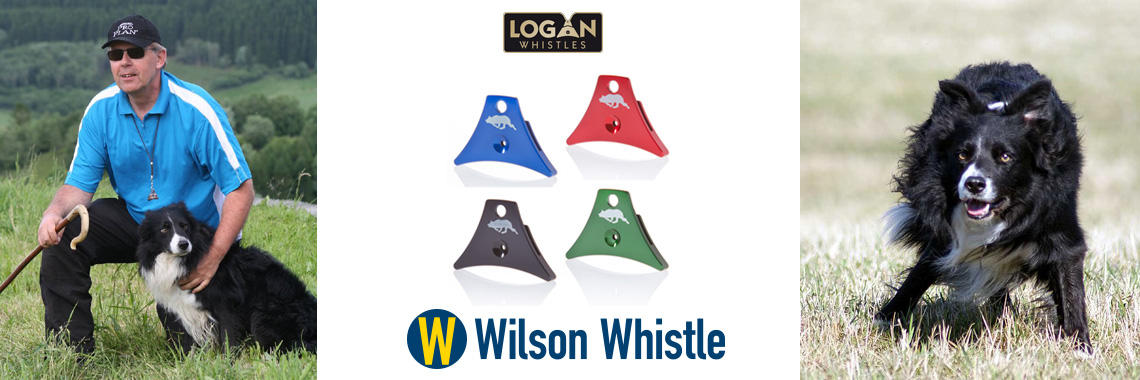 Logan-Wilson